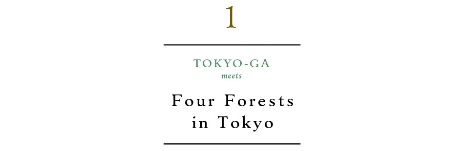 TOKYO-GA meets Four Forests in Tokyo